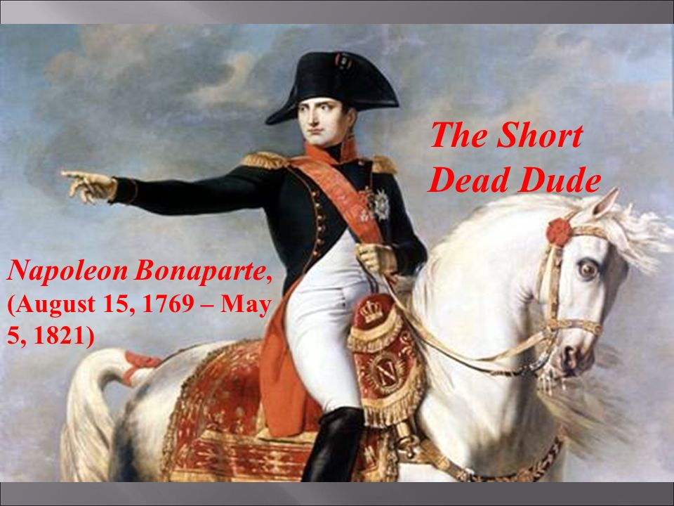 Napoleon actually was a short dead dude (The philosophy of: Bill S. Preston Esquire pt.2)