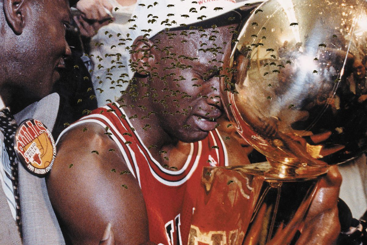 Whypothetical – What If?… Would Michael Jordan Have Been The Greatest of All Time If He Had Constantly Had a Swarm Of Bees Following Him Everywhere?